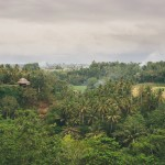 Our Holiday to Ubud